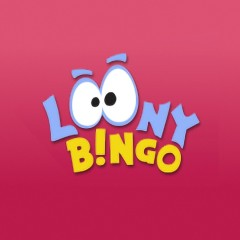 Loony Bingo internet side
